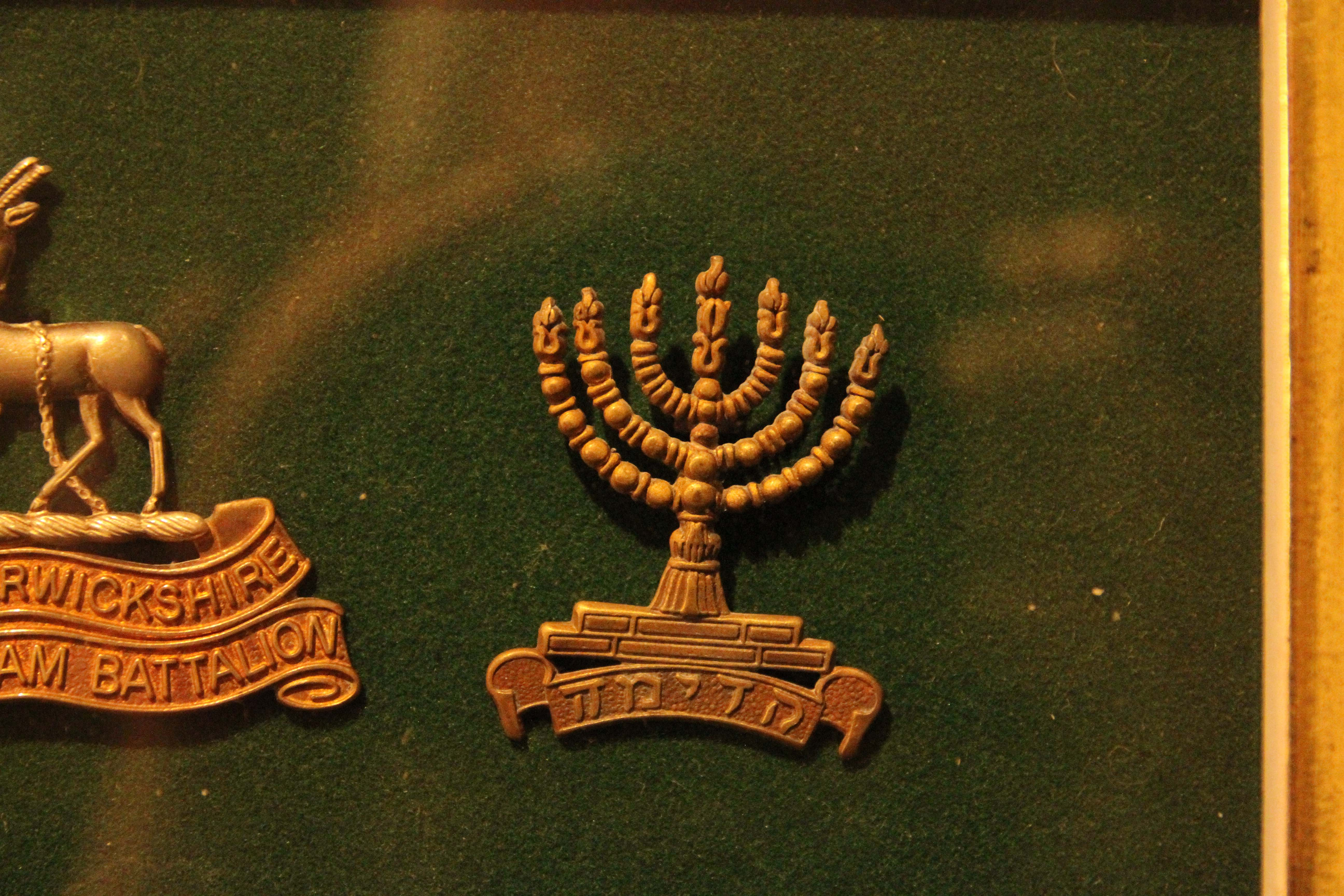 Jewish lapel pin. We Were There Too trip to Ypres, April 2017 By Alan Brill, Voluntary Photographer