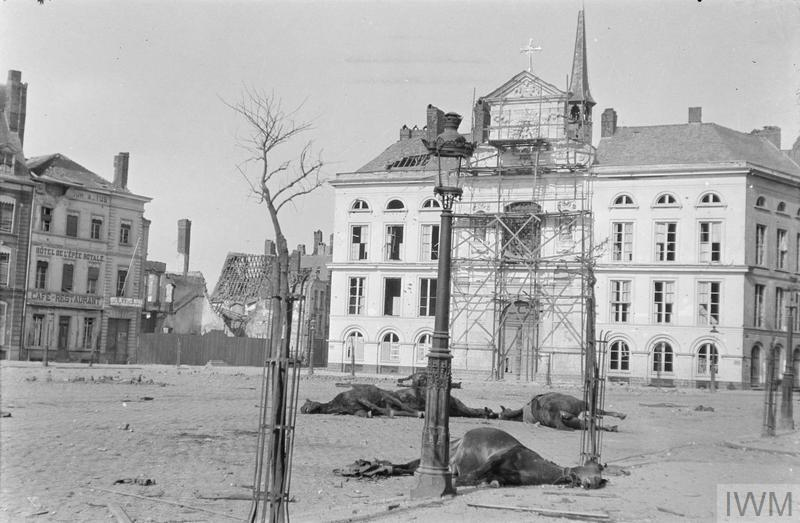 Dead horses in front of the damaged hospital at Ypres in the town square, April 1915. © IWM (Q 61631)
