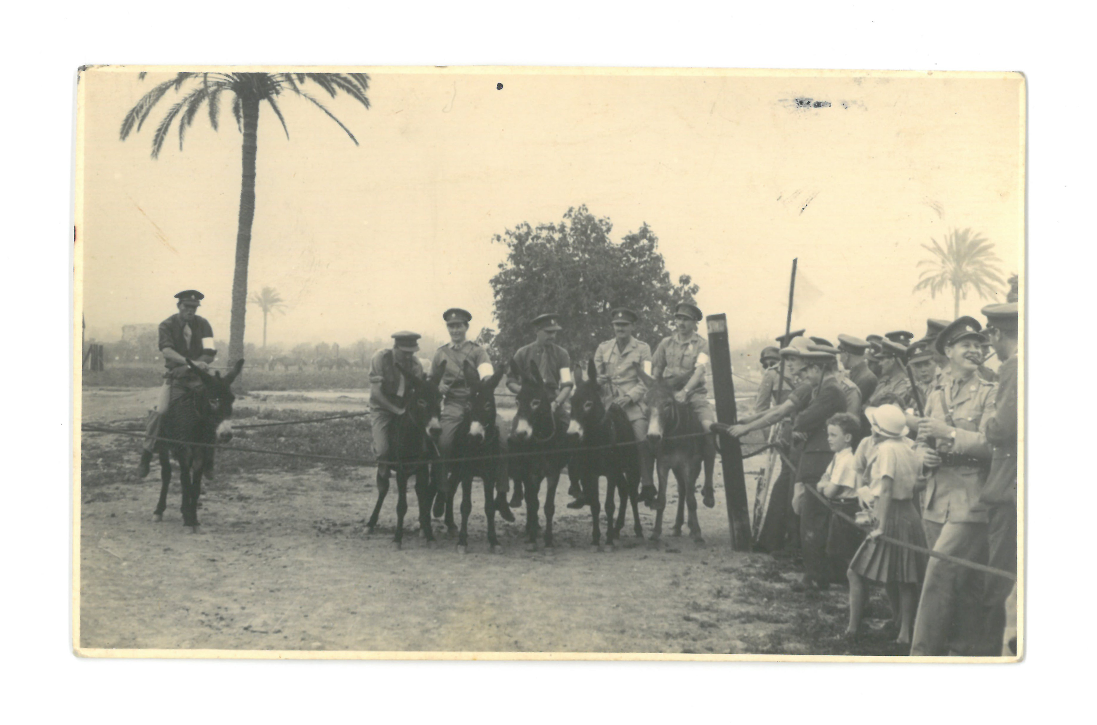 Soldiers of the Jewish Brigade, Donkey Derby, Zion Mule Corp